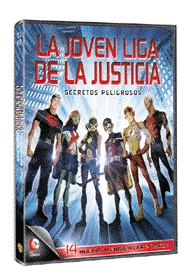 Young Justice Vol. 4