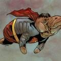 Superman manatí
